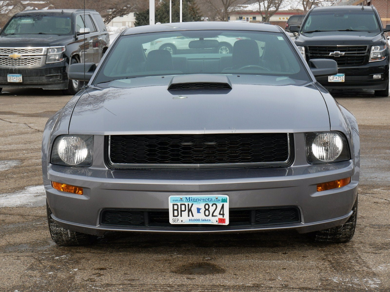Used 2007 Ford Mustang GT Premium with VIN 1ZVFT82H975231427 for sale in Apple Valley, Minnesota